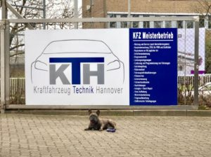 Logo_mit_hund